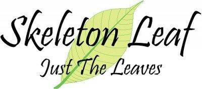 skeletonleaf Retina Logo