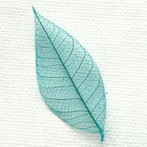 Turquoise Skeleton Leaf for sale