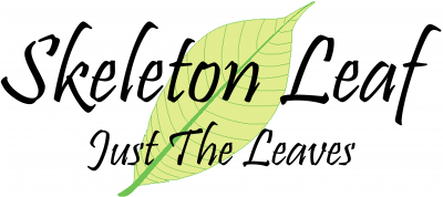 skeletonleaf Logo